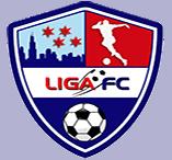 Liga de Futbol Chicago Hillside Infantil