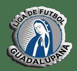 Liga Guadalupana de Painesville