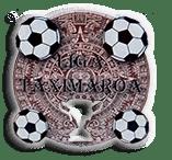 Liga Taximaroa