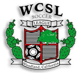 Woodland Adult Soccer League