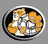 Asociacion de Futbol Latinoamericano AFLA