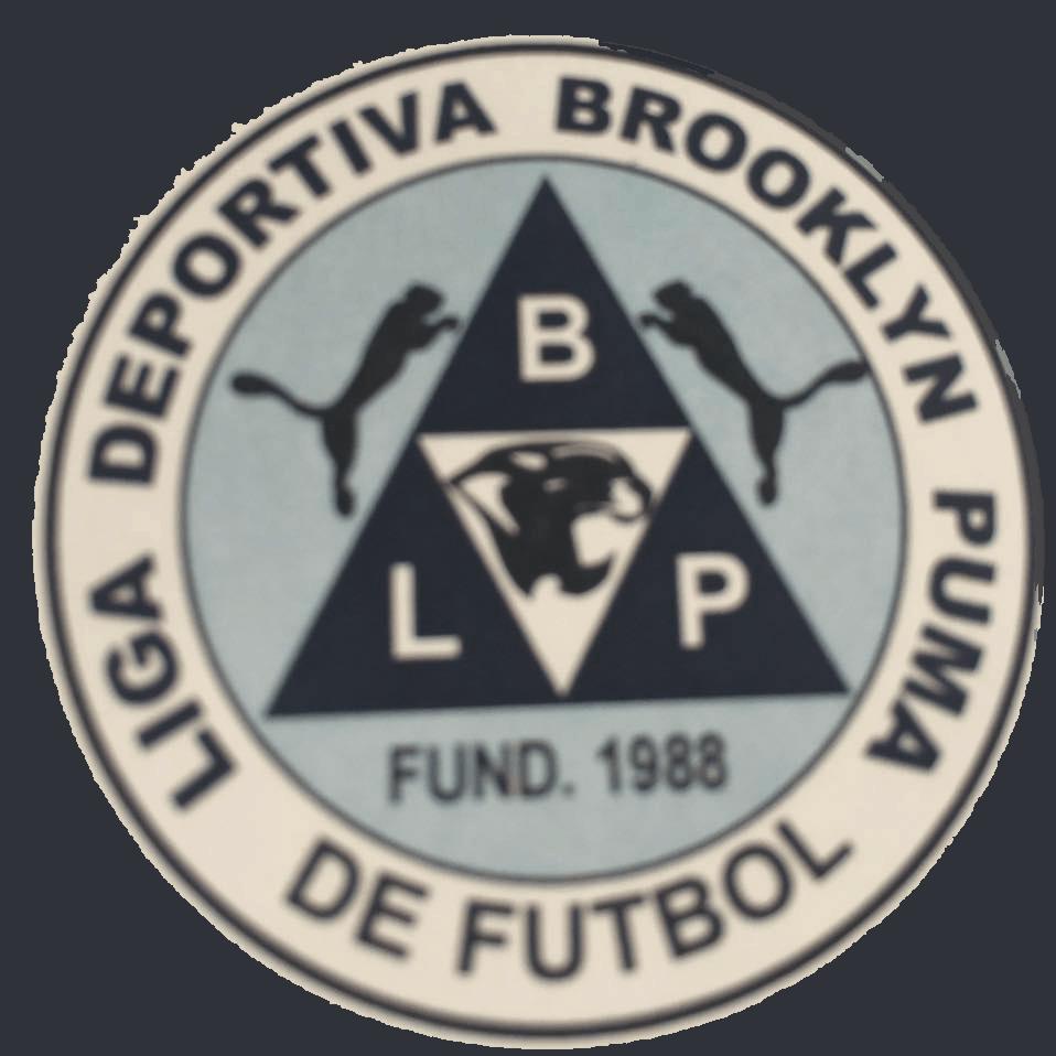 Liga Brooklyn Puma de Futbol