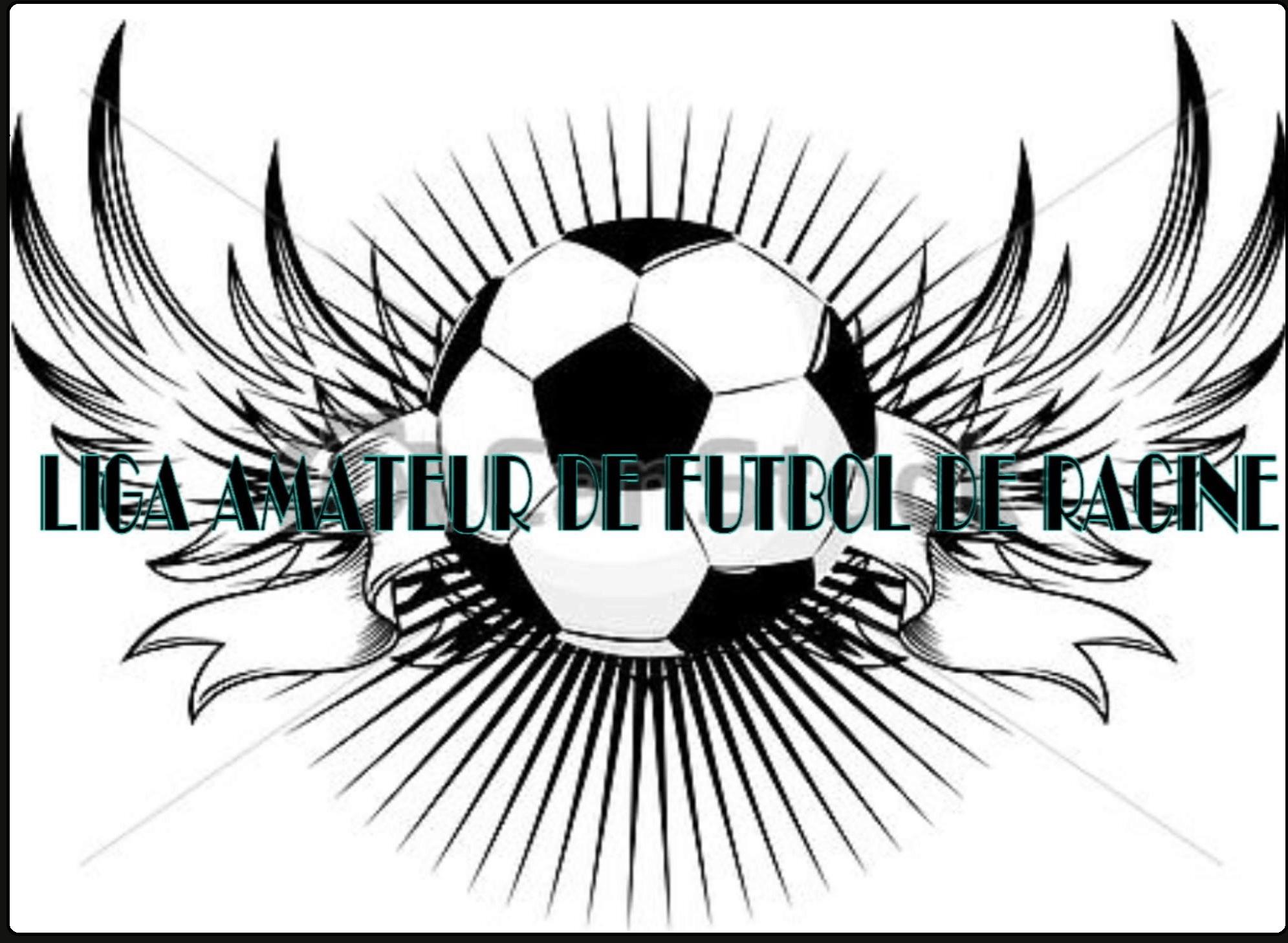 Liga Amateur de Futbol de Racine